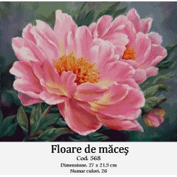 Floare de maces