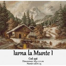 Iarna la Munte I
