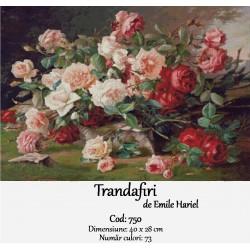 Trandafiri de Emile Hariel