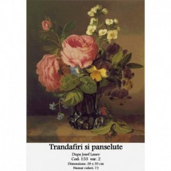 Trandafiri si panselute de Josef Lauer