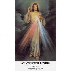 Set goblen - Milostivirea Divina