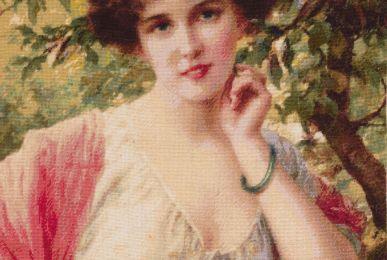 Sumer Rose, 30 cm - 37 cm, 50 culori