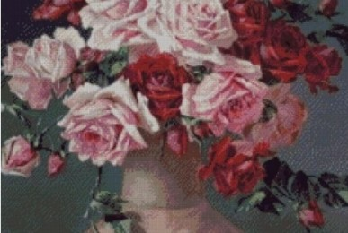 trandafiri-de-c-klein