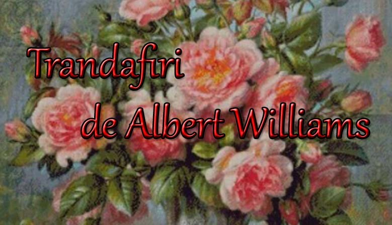 trandafiri-de-albert-williams