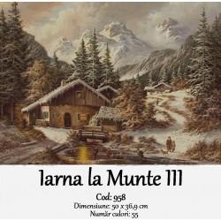 Iarna la Munte III