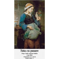 Set goblen - Fata cu pasare dupa Emile Auguste Hublin