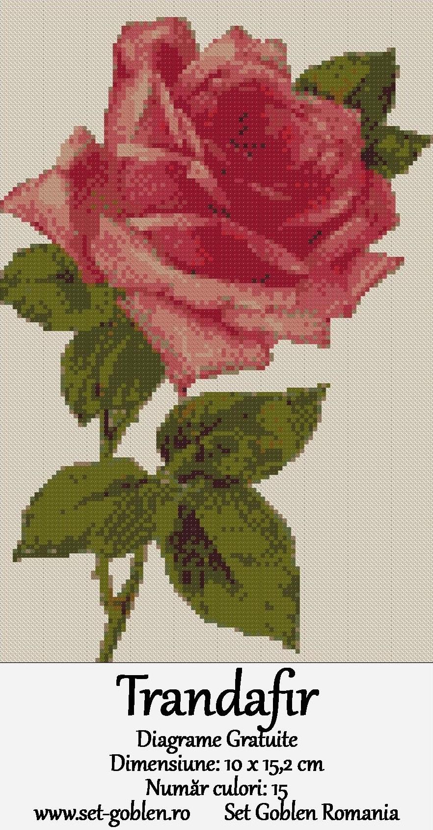 Trandafir – goblen cu diagrame gratuite